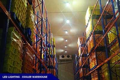 LED FLOOD LIGHT @ COOLER WAREHOUSE PROJECT (H: 11M)