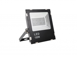 LED Flood Light G3